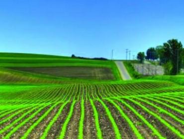 Зърнени и маслодайни продукти във варненско – ЗК Труд