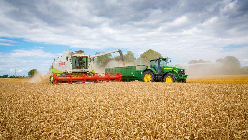 Зърнопроизводство, ремонт на селскостопанска техника и мелиоративни услуги   Агромеханизация ЕООД