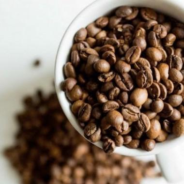 7 ползи от употребата на утайката от кафе в градината