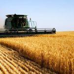 Отглеждане на пшеница, ечемик, овес, слънчоглед и други | ПК Успех