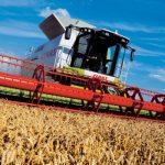 Отглеждане на зърнени и маслодайни култури Кнежа | ЕТ Светлин Илчовски