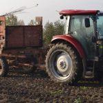 Овощни дръвчета Казанлък | Овощен разсадник Стоян Господинов