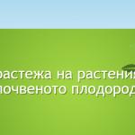 screenshot_2020-03-05-%d0%ba%d0%be%d0%bd%d1%82%d0%b0%d0%ba%d1%82%d0%b8-ecore-ltd